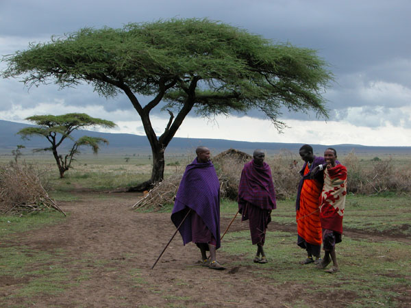 Masai Village Men in Tanzania, Africa