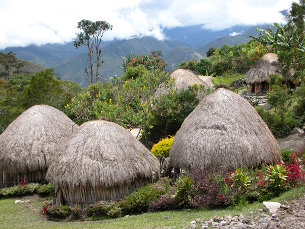 Papua, Indonesia - Village of Kilisa in Baliem Valley