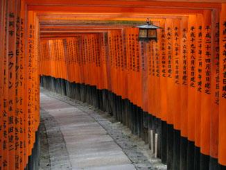 Torii Gates of Fushimi Inari-taisha