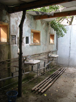 Sinks in Shower Block at Soviet Holiday Village, Iskander Kul, Tajikistan