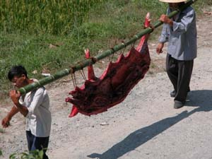 Chengyang, China - Half of a Pig as a Wedding Present