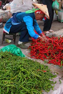 Dali, China - Sorting Chilis