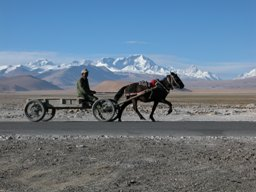 Cho Oyu and horse cart
