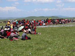 Nomads enjoying the horse racing