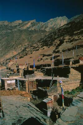 Annapurna Circuit - Phedi Homes
