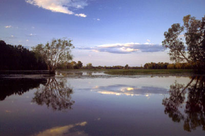 Yellow Waters Reflection - Kakadu, Australia