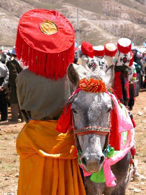 Road to Sakya, Tibet - Horse Festival...A Rider and His Horse