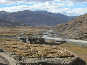Sakya, Tibet - Drying Hay