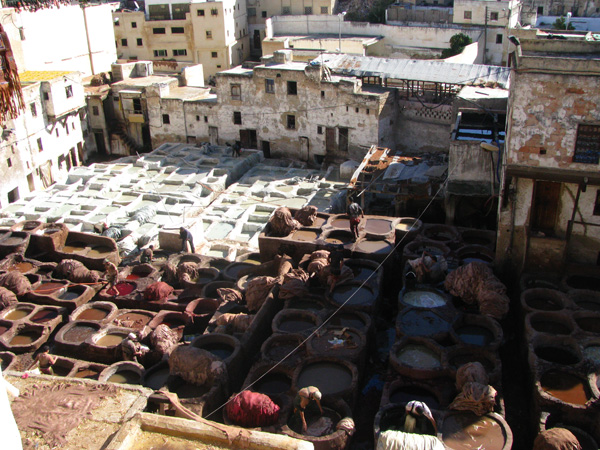 Fez, Morocco - Tannery