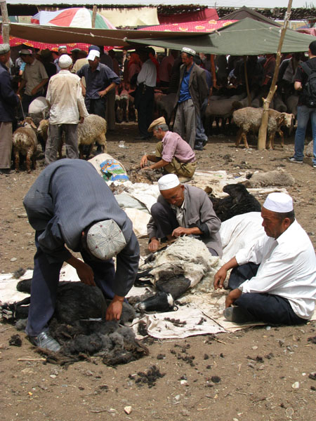 Kashgar, China - Sunday Livestock Market Sheep Shearing