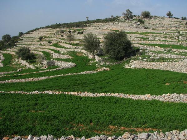 Lycian Way, Turkey - Gey to Gavuragili Section